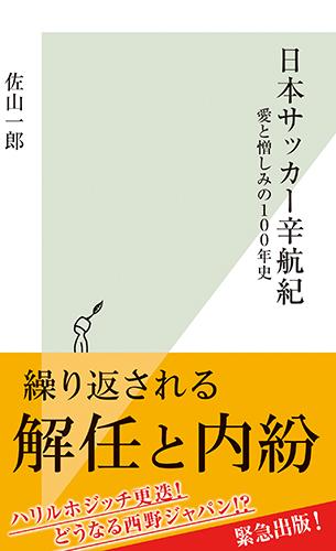 日本サッカー辛航紀